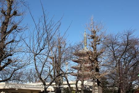 【東京自由行】淺草觀音寺‧天空之樹♥Day4